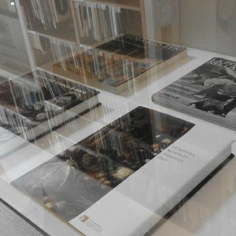 Consulta il catalogo completo con le pubblicazioni della Fondazione Federico Zeri. Con l'acquisto di un volume contribuirai a sostenere l'attività della Fondazione.