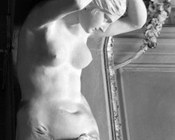 Giacomo Rossi, Cariatide, particolare, Bologna, Palazzo Aldrovandi